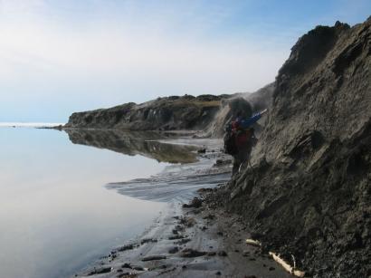 Остров Большой Ляховский, южный берег западнее устья реки Зимовье